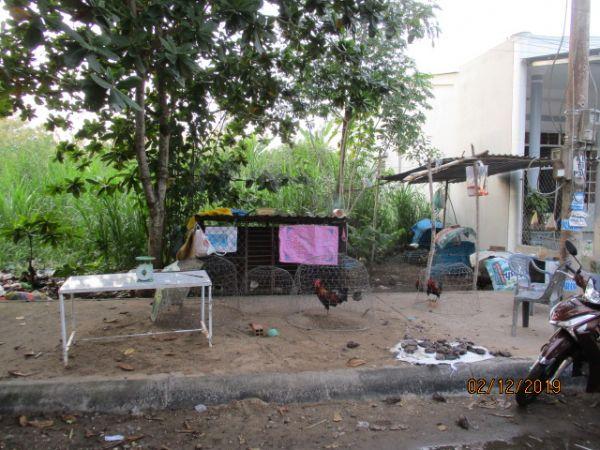 Đất Mặt Tiền Đg Nội Bộ Khu Tái Định Cư Xã Lộc Hoà Tp Vinhlong - 520798