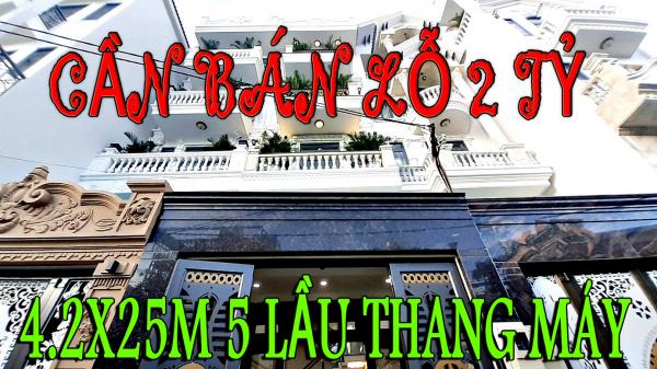 Bán Nhà Tân Bình-Siêu Biệt Thự Phố 2020-Dt 4.2X25M 1 Lửng 4 Lầu -Thang Máy - 526519