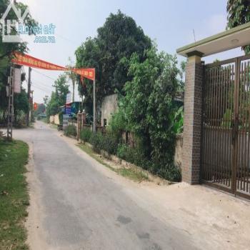 Bán Đất Mặt Đường Lê Thánh Tông, Phường Nghi Hương, Tx Cửa Lò. Lh: 0916-801-373 - 540067