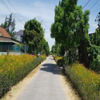 Bán Lô Đất Siêu Hot Mặt Đường Lý Nam Đế- Gần Đường Nguyễn Sinh Cung- Tx.cửa Lò - 540553