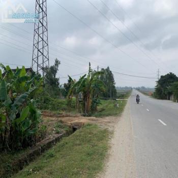 Cần Bán 800M2 Đất Mặt Đường Đặng Thai Mai - 542392