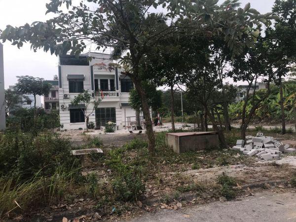 Bán Lô Đất Khu Vạn Lộc, Tứ Minh, 80M2, Mt 5M, Quay Vườn Hoa 1 Tỷ 640 Triệu - 550426