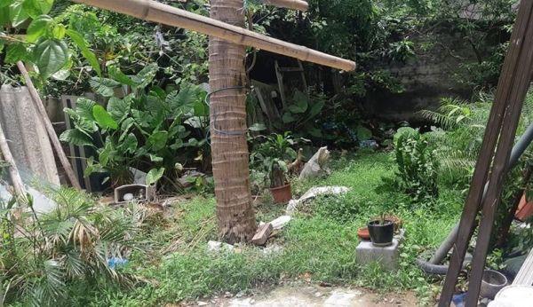 Bán Đất Đẹp Trung Tâm Phú Thượng Tây Hồ Xây Villa Sân Vườn 80M2 Giá 5,X Tỷ - 564805