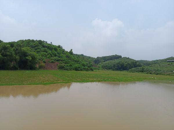 Bán 7Ha Đất Dự Án Công Nghiệp Tại Lạc Thủy Hòa Bình - 568102
